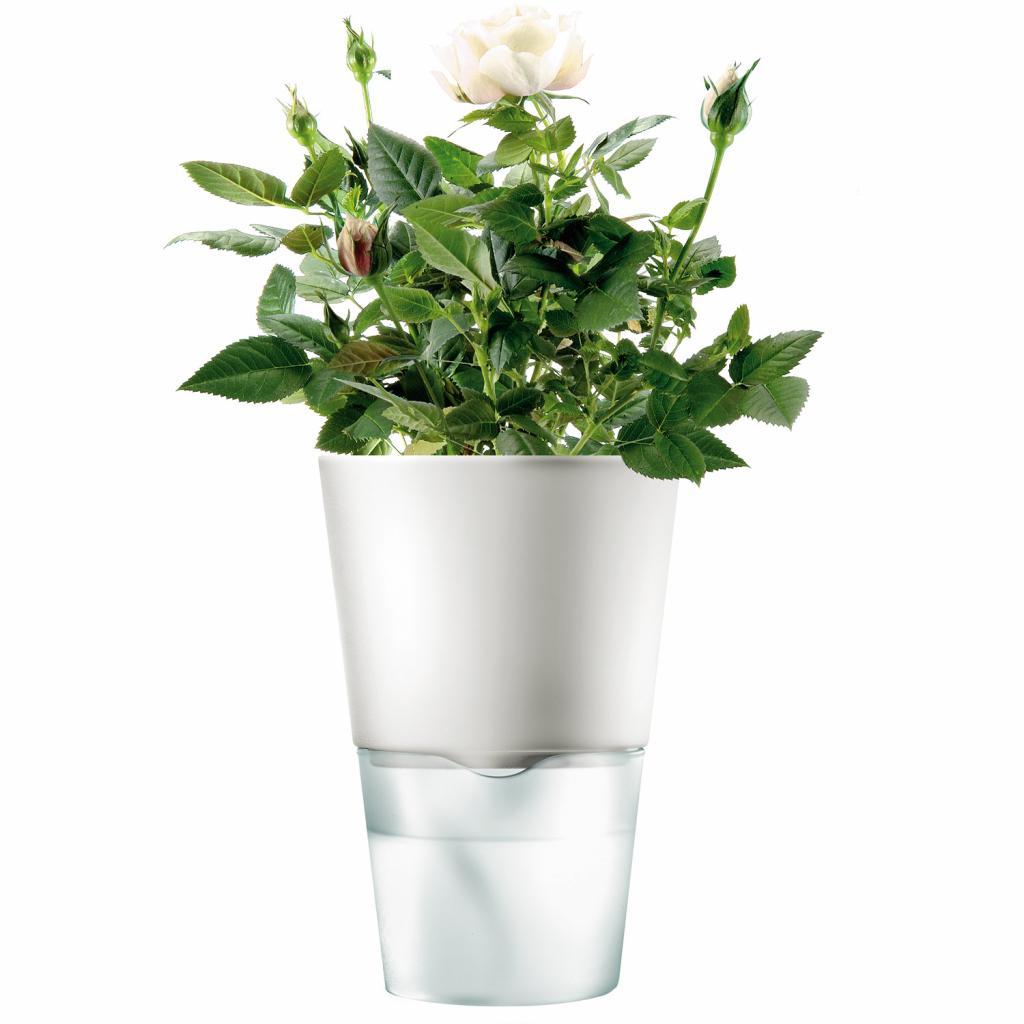 Produktové foto Eva Solo Samozavlažovací květináč křídově bílá Ø 11 cm
