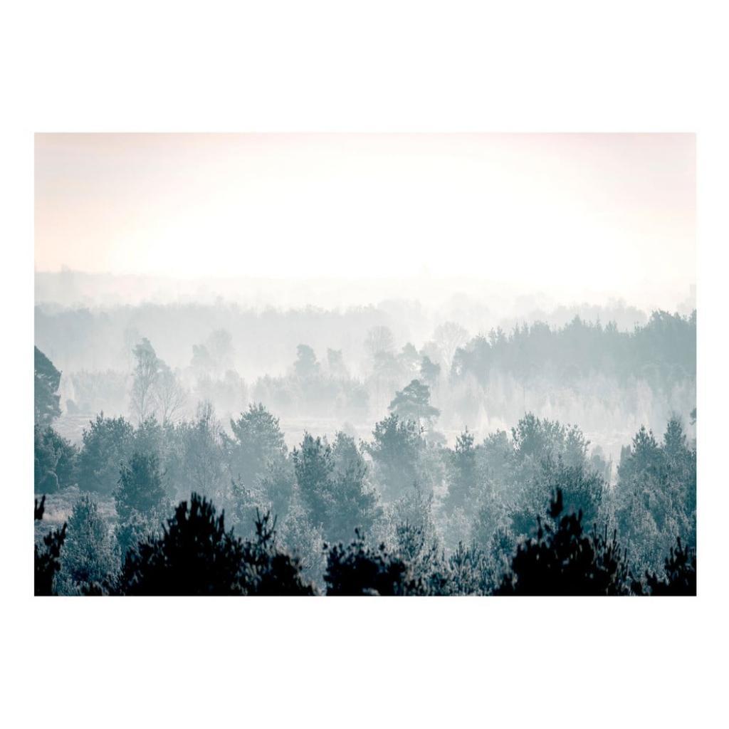 Produktové foto Velkoformátová tapeta Artgeist Winter Forest 400x280cm