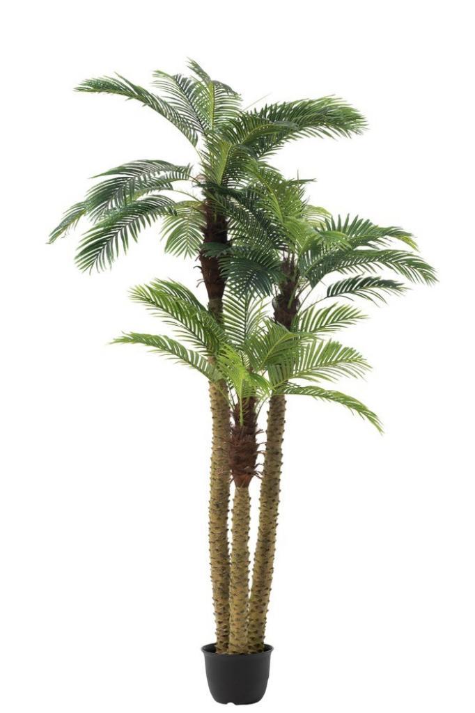 Produktové foto J-Line by Jolipa Okrasná trojitá palma v květináči Palm - Ø180*300cm