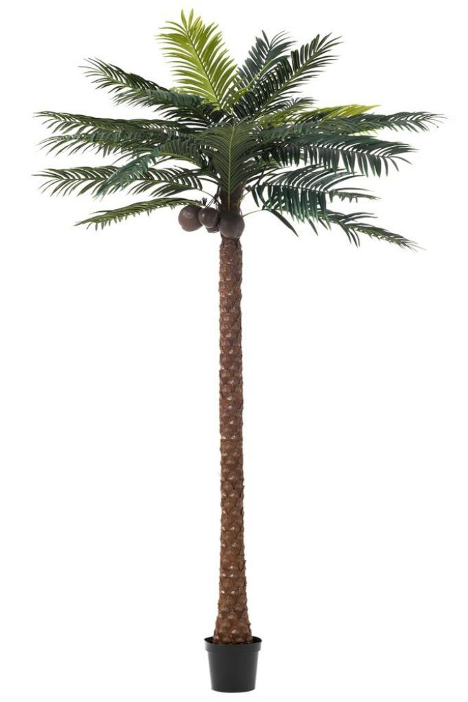 Produktové foto J-Line by Jolipa Okrasná palma v květináči Palm - Ø190*350cm