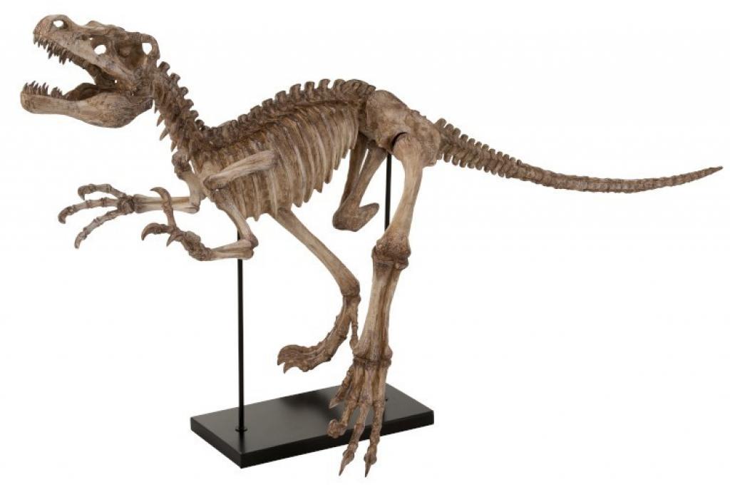 Produktové foto J-Line by Jolipa Dekorace dinosaurus Raptor na kovové noze - 145*59*81,5 cm