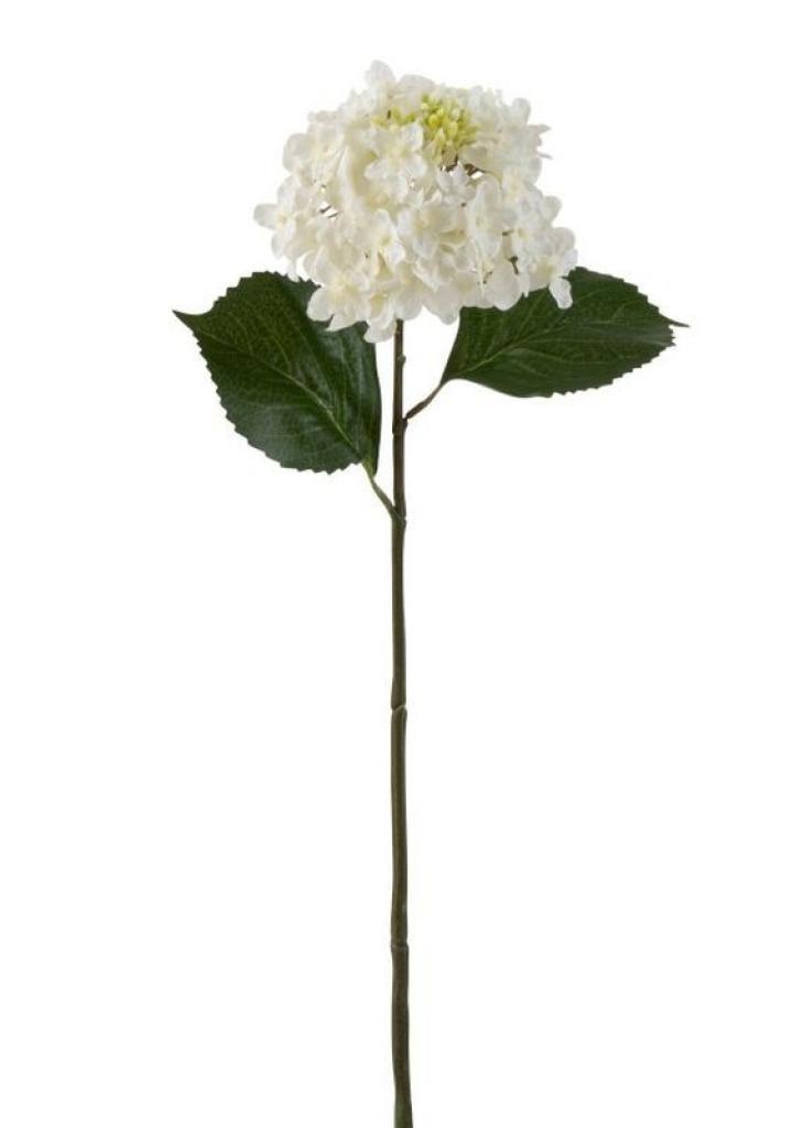 Produktové foto J-Line by Jolipa Bílá dekorační květina Hortenzie - 51cm