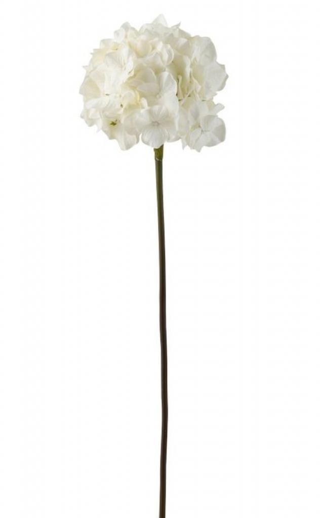 Produktové foto J-Line by Jolipa Bílá dekorační květina Hortenzie - 63 cm