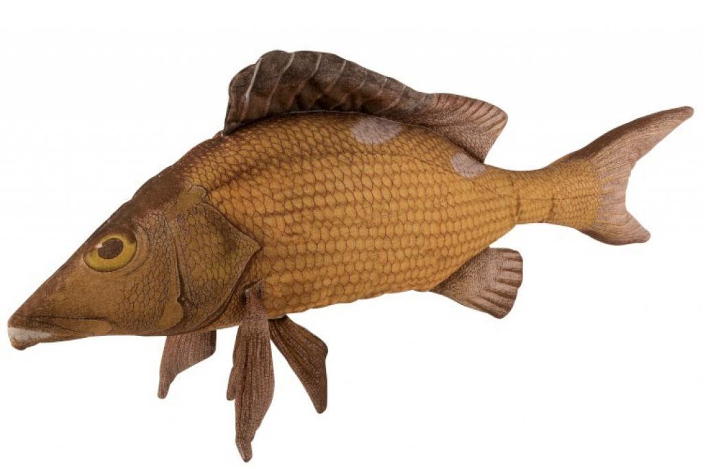 Produktové foto J-Line by Jolipa Hnědý polštář ryba Fish Paul - 93*28*40 cm