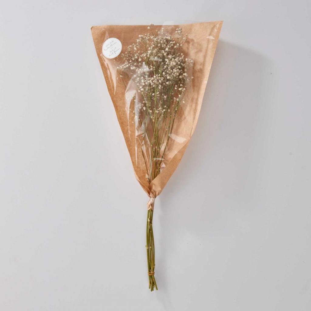Produktové foto FLOWER MARKET Nevěstin závoj sušený - bílá