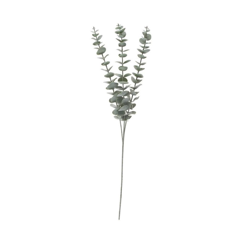 Produktové foto FLORISTA Větvičky eukalyptu 60 cm set 4 ks