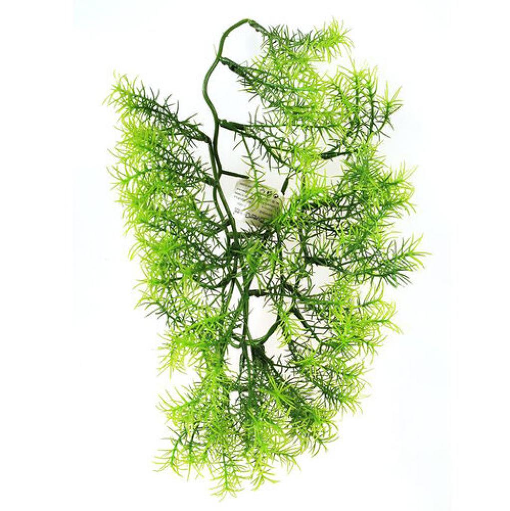 Produktové foto Umělá květina Asparagus, 40 cm