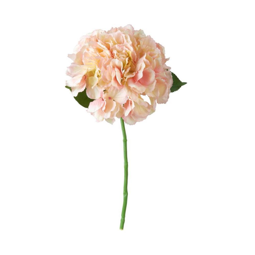 Produktové foto FLORISTA Hortensie 40 cm - sv. růžová